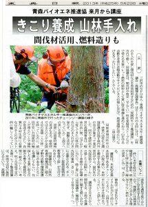 新聞記事20130529